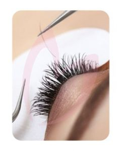 Lash & Brow Treatment (Kit)